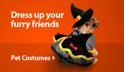 Pet Costume Ideas