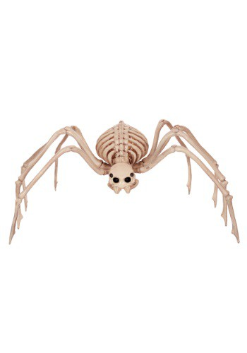 "34"" Skeleton Spider"
