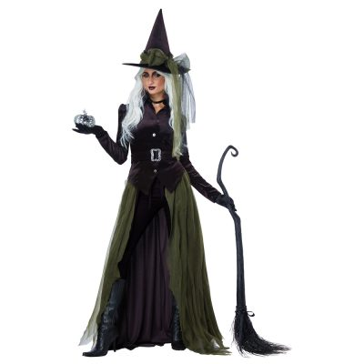 Gothic Witch Adult Womens Costume